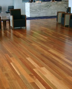 Spotted Gum from D.I.Y Parquetry and Cork